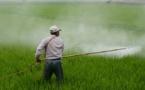 Bayer s'offre Monsanto pour 66 milliards de dollars