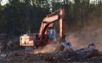 35 sociétés françaises accusées de ne pas être transparentes sur leur rôle environnemental
